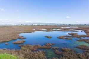 california wildlife refuge